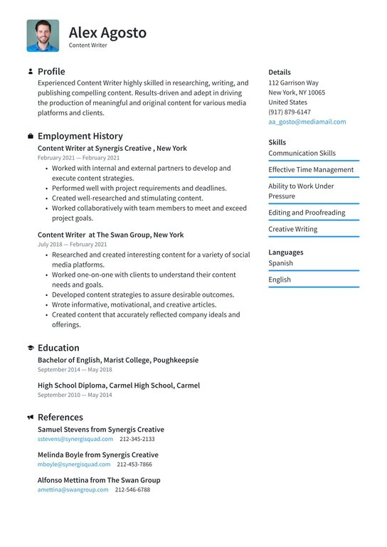seo content writer resume